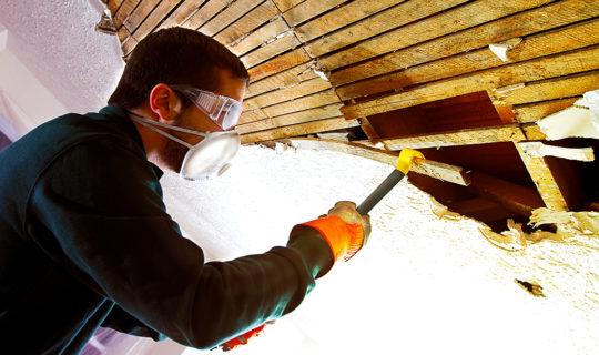 asbestos removal cost